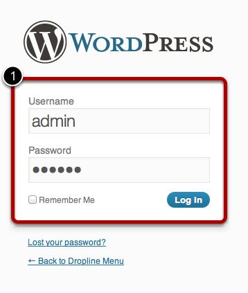 Step_8_Login_to_WordPress.jpg