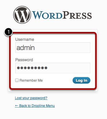 Step_16_Log_In_to_WordPress.jpg